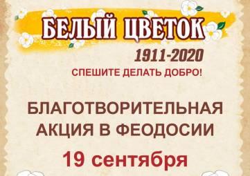 Елена Аксенова: «Белый цветок» - большое и важное дело»