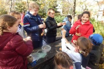 Экологический квест прошел в музее Паустовского
