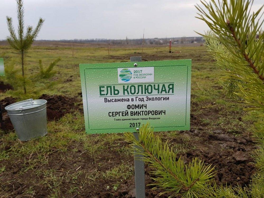 Феодосийские чиновники присоединились к акции «Посади свое дерево»