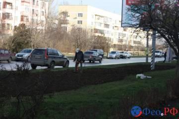 Одна из улиц Феодосии «утонет» в розах