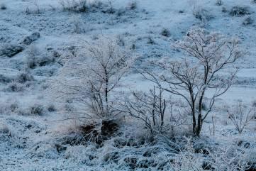 ФОТОРЕПОРТАЖ «Зимняя прогулка» на Тепе-Оба