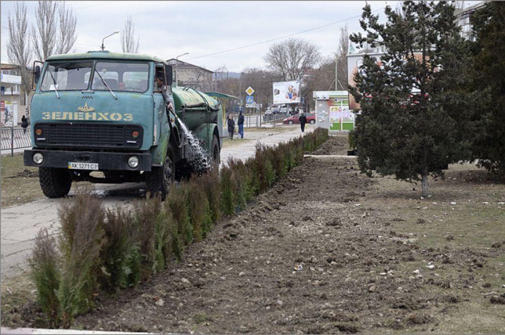 В конце прошлого года на улицах Феодосии высадили свыше 5,4 тысяч деревьев и кустарников