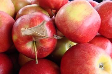 Цены: и редис, и виноград…