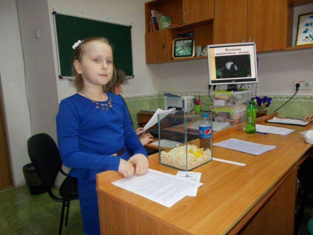 Феодосийские школьники показали хорошие результаты.