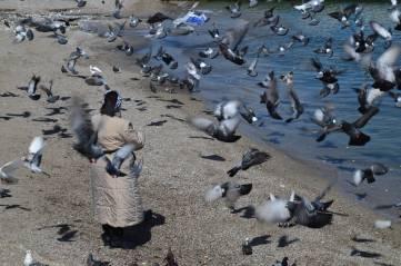 Потеплело в Феодосии, после зимней спячки наконец-то город начинает оживать