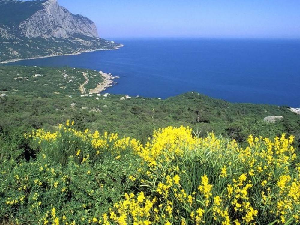 Минприроды Крыма будет через суды возвращать землю заповедникам