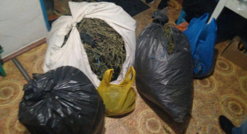 ФСБ перекрыла крупный канал поставки крымской марихуаны в Москву