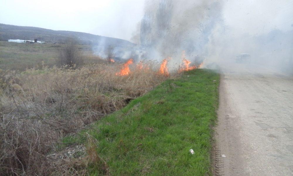 Участились случаи возгораний сухой растительности