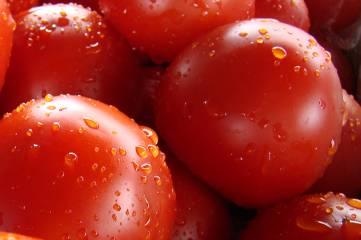 Помидоры: 50 оттенков красного…