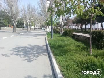 Трава в городе