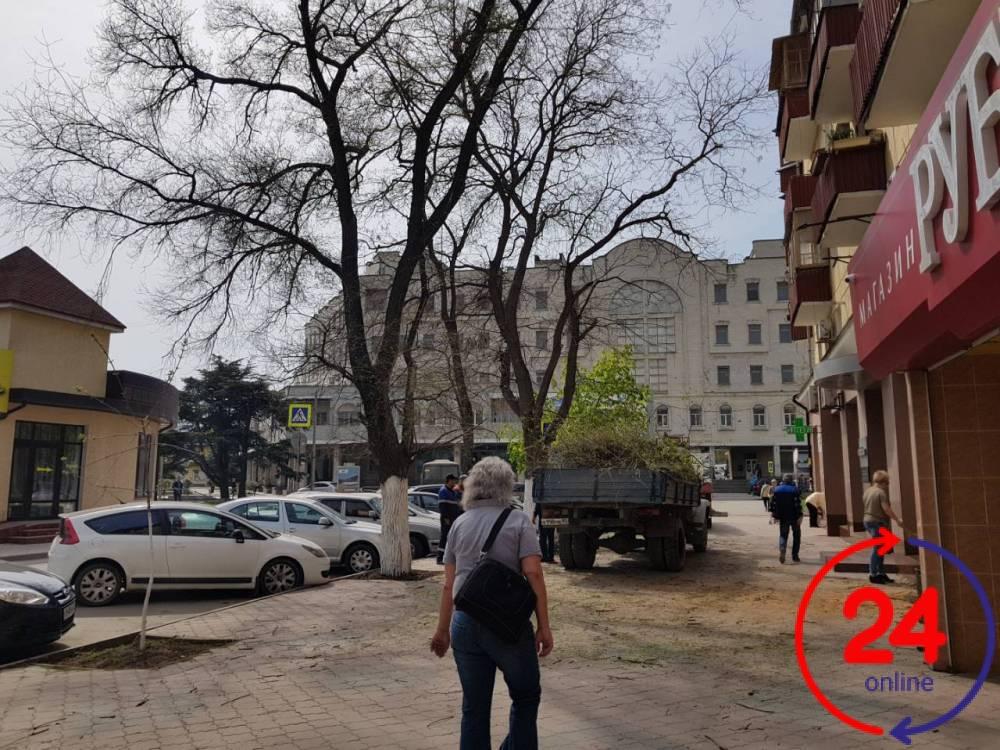 В центре Феодосии срезают деревья