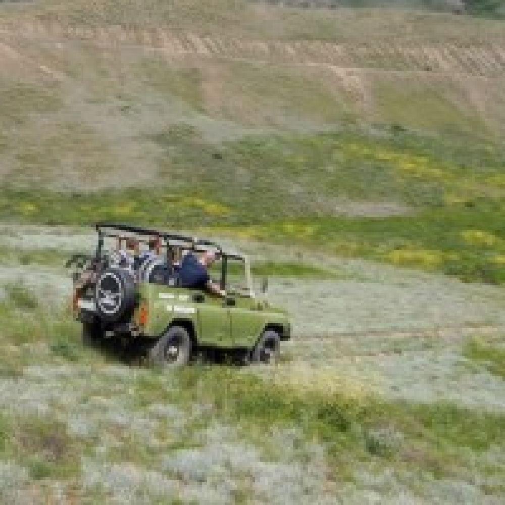 В Феодосии провели джиппинг для инвалидов-колясочников