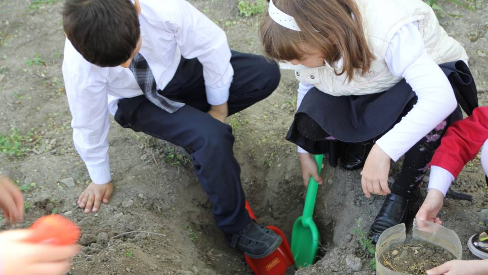 Глава администрации с учениками высадил деревья