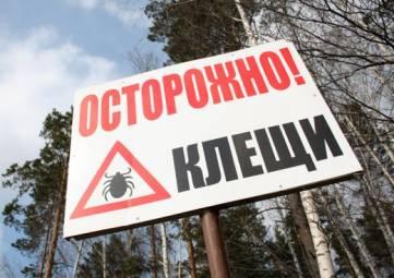 Более 10 тысяч россиян укушены клещями