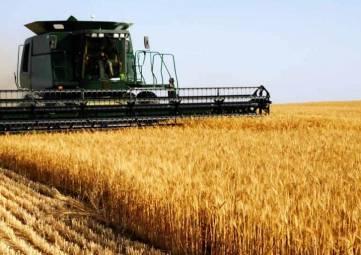 Аксенов предложил возродить в Крыму колхозы