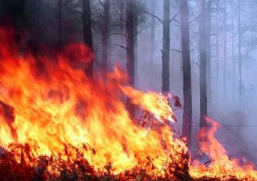 В Крыму с 23 по 25 мая объявили чрезвычайную пожарную опасность