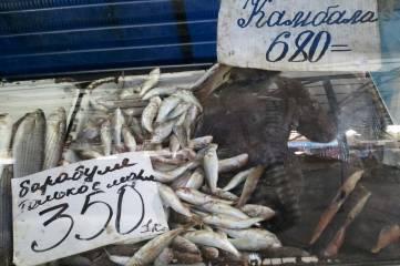 Рынок. В канун Дня рыбака отдаем предпочтение рыбе