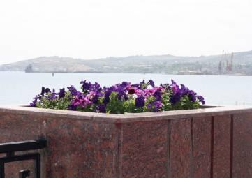 В тумбах на набережной появились цветы