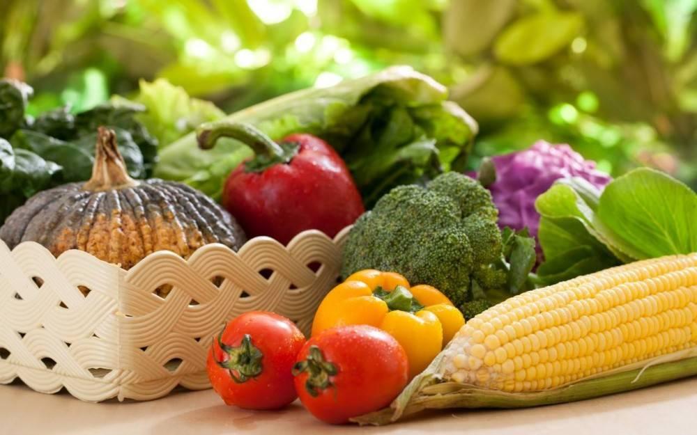 Ярмарка сельскохозяйственной продукции и продуктов ее переработки