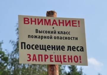 Все леса Крыма со вторника будут закрыты