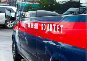 Следкомитет раскрыл убийство новорожденного ребенка в Симферопольском районе