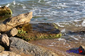 На песчаном берегу Черного моря