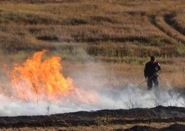 Горячий год: в Крыму растет количество пожаров на открытой местности