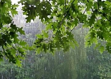 На Крым надвигаются грозовые дожди