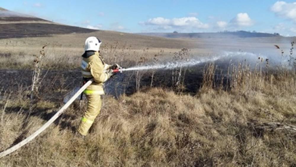 Крымские пожарные ликвидировали за сутки возгорания сухостоя на общей площади в 1,3 га