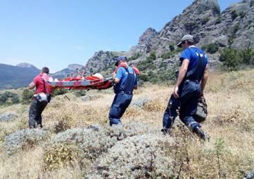 Атака осы: в горах Крыма после укуса у девушки началась аллергия