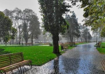 На выходных в Крыму будет прохладно и дождливо