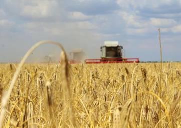 Крым обновил парк зерноуборочной техники на 50%