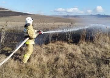 Крымские пожарные с начала месяца потушили сотню возгораний сухой травы