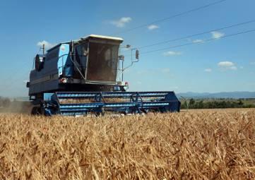 В Крыму предлагают наказывать аграриев за