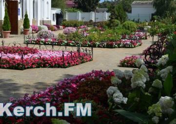 В Керчи расцвел ботанический сад