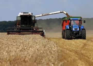 Крымские аграрии получат почти 50 млн руб господдержки из-за роста цен на топливо