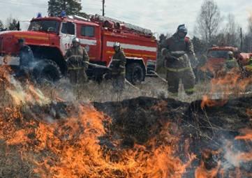 Несмотря на дожди: на юге Крыма объявлена чрезвычайная пожароопасность