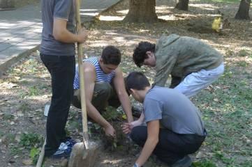 День леса в Феодосии