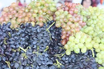 В Феодосии виноградный бум!