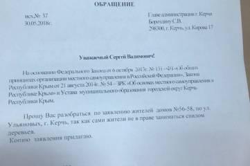 «Славу прикарманили себе»: депутат три месяца боролась за обрезку деревьев на Ульяновых