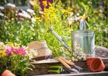 В Крыму бесплатно дают земельные участки для ведения садоводства