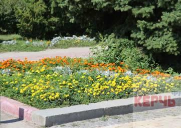 Попытка № 3: цветы в Сквере Славы начали поливать