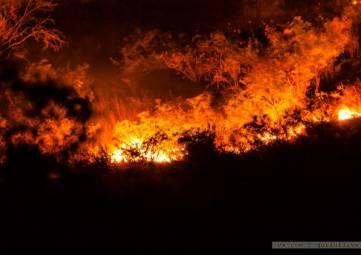 ЮБК снова в огне
