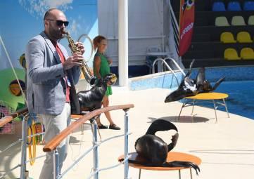 Джаз с дельфинами, под парусом и на сцене: второй день Koktebel Jazz Party