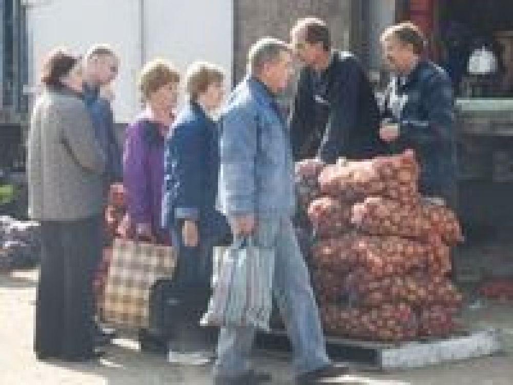 На ярмарке в Феодосии реализовано более 11 тонн сельхозпродукции по ценам ниже рыночных