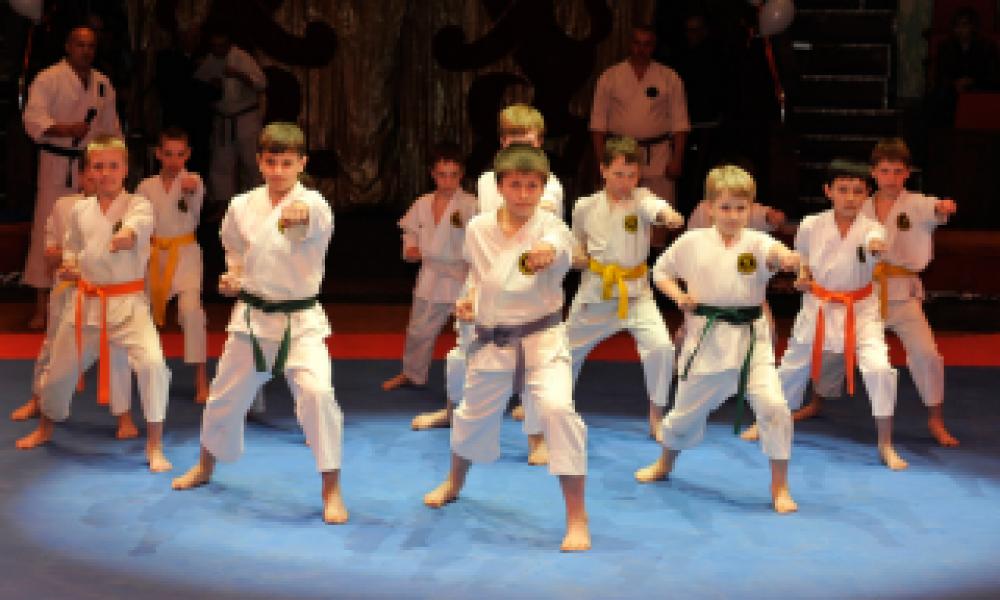 В Феодосии, ко Дню народного единства, пройдут открытые показательные уроки по боевым искусствам