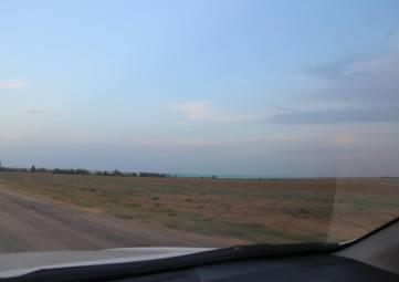 Гибель деревьев, опасный ветер и пропажа воды: что увидели крымские экологи в Армянске, - фото