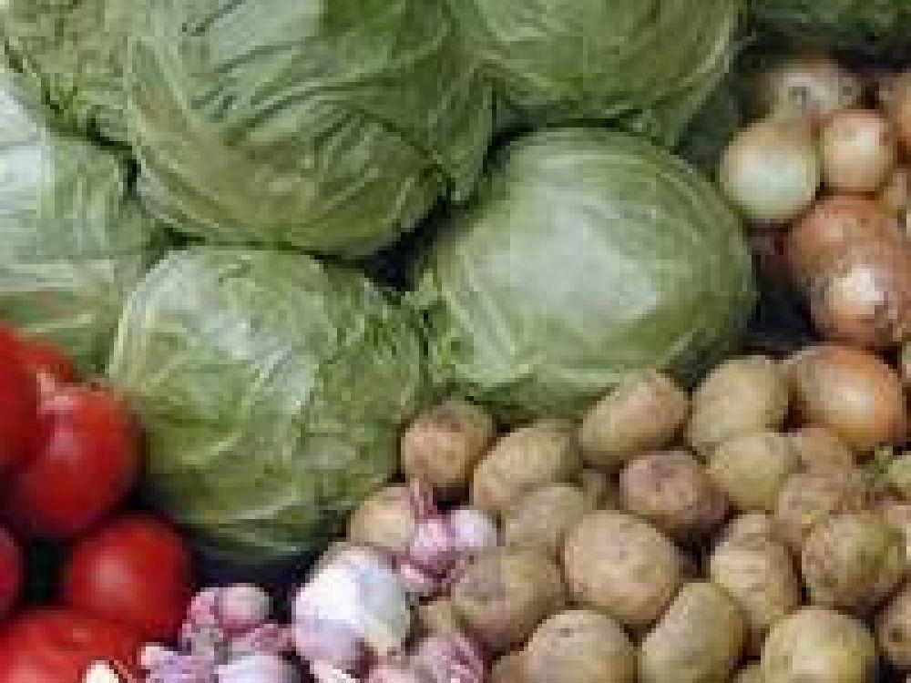 На ярмарке в Феодосии реализовали более 10 тонн сельхозпродукции