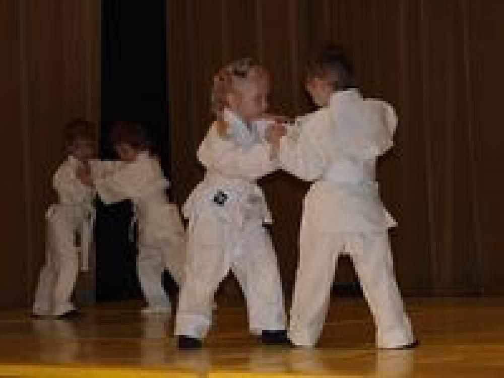 В Феодосии пройдет фестиваль детского дзюдо
