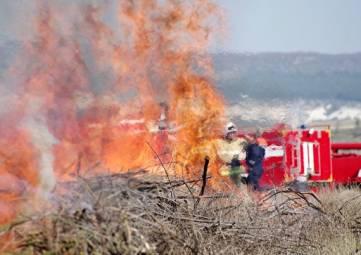 Шашлык и салют под запретом: в Крыму чрезвычайная пожарная опасность